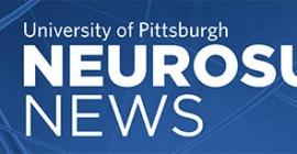 Neurosurgery News Newsletter